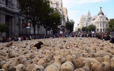 October in Madrid